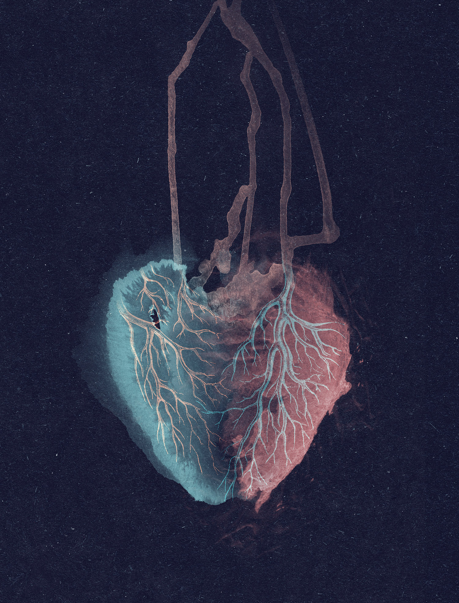 heartheartcover3